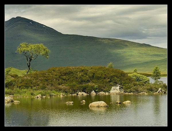 Rannoch Moor 2 by AliMurray