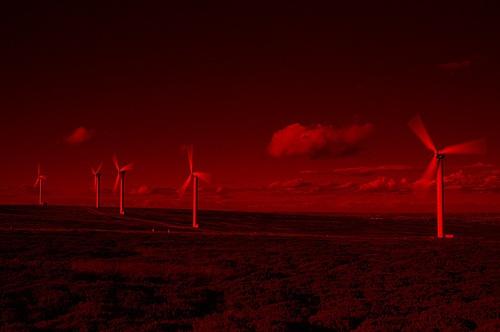 Little windmills by RipleyExile