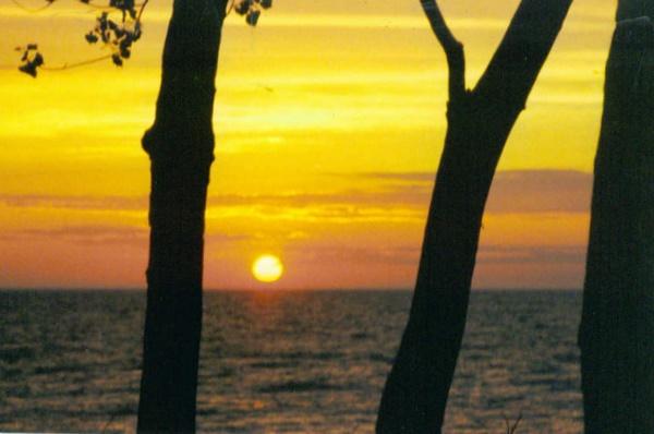 sunset by dawnmichelle