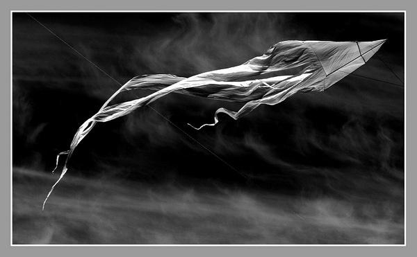 Brighton Kite by StephenBrighton