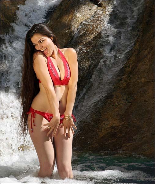 Bikini Babe by hirschi