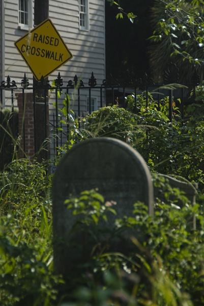 Zombie Crossing by gajewski