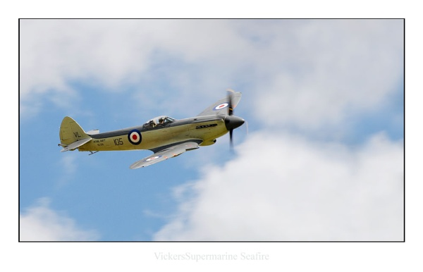Seafire by phillips