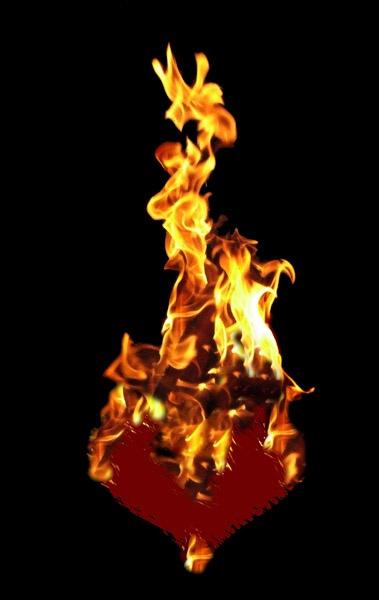 mein hertz brennt by cat_mc