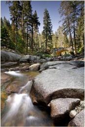 Sequoian River