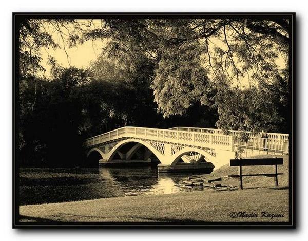 The Bridge. by logari