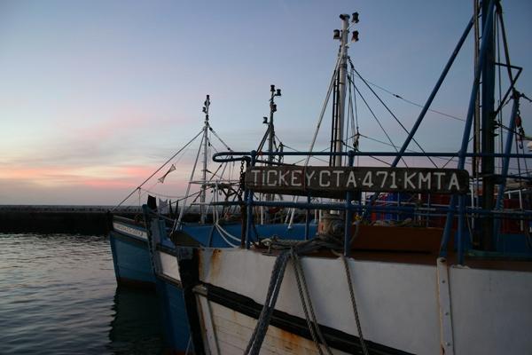 Boats Lining Up by Nita
