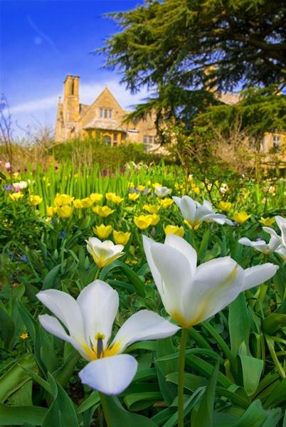 Hidcote Manor Garden by Strobekid