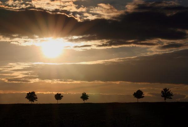 Horizon Shine by stumo