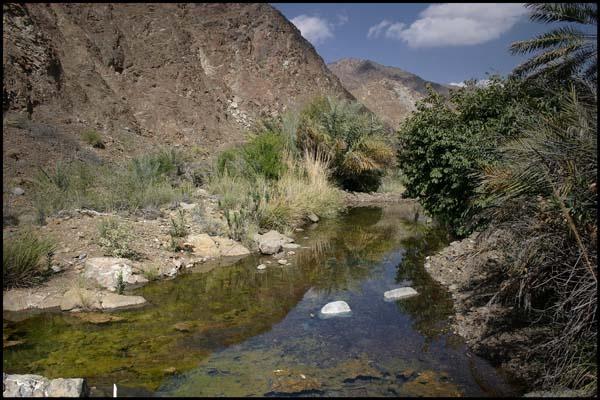 Wadi Hayl by magnus