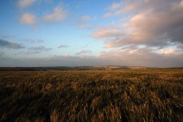 cornish landscape by RobbieC