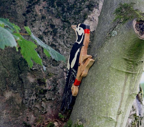 Wooden Woodpecker by Peter_Farrell