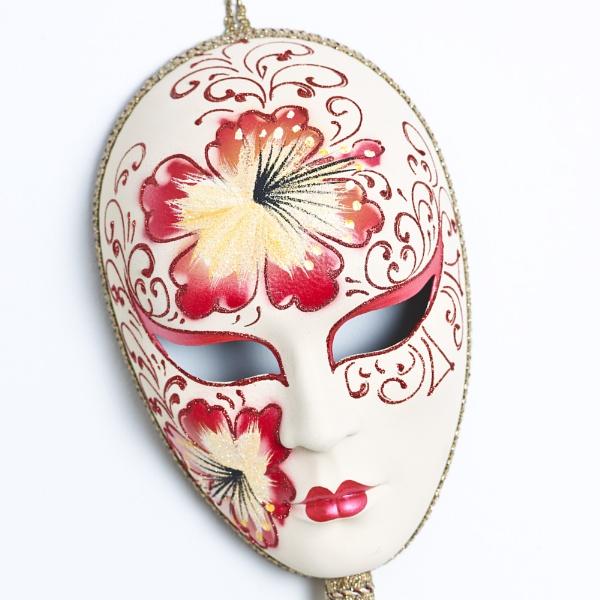 Mask on white by stevekhart