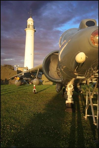 Souter Harrier by danielle1987