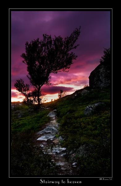 Stairway to heaven by teodor
