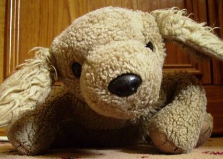 My Stuffed Teddy by Bigshot