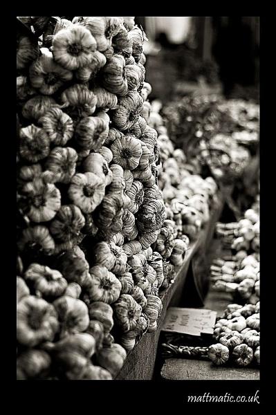 Bulbs a plenty by mattmatic