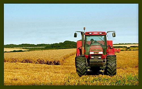 Harvest Time by derekv