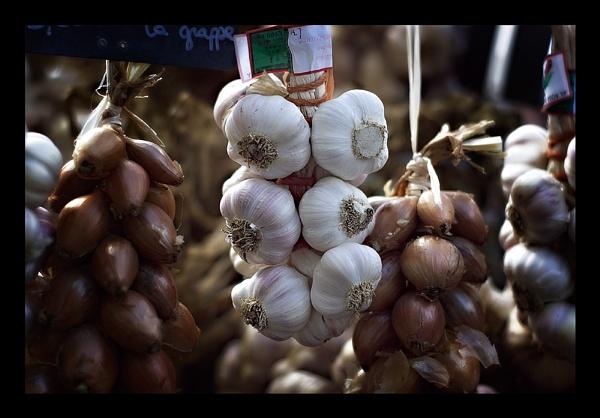 Garlic - age 3 by mattmatic