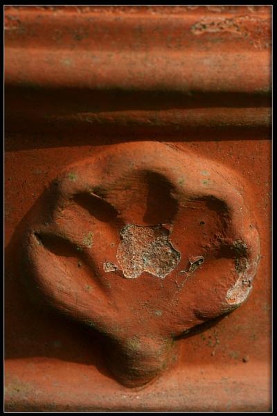 Terra Detail by Morpyre