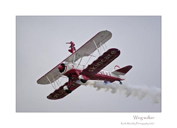 Wing Walker by keith_yorkie