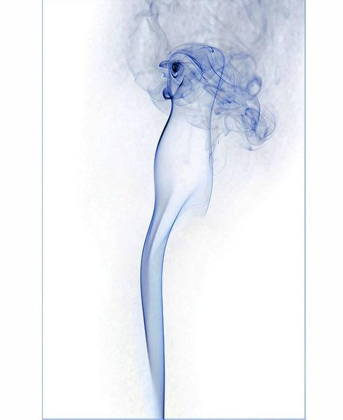 Smokin penguin by C_Daniels