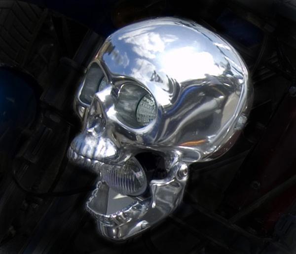 The skull by cadishead