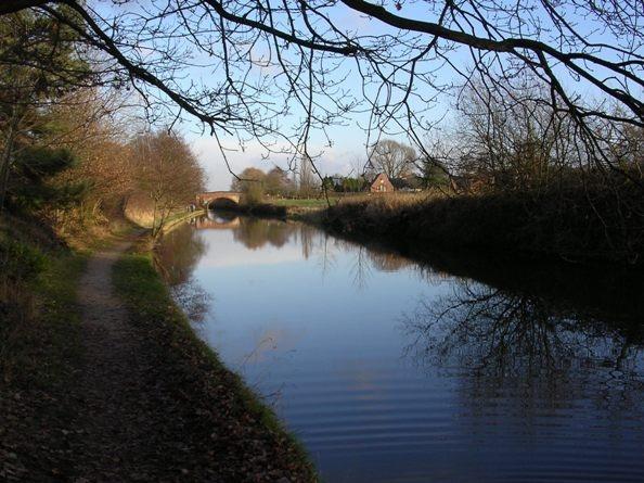 Bridgewater ripple by Birdseye