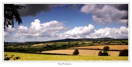 Into Dartmoor