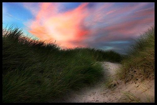 Dusky Dunes by dalischone