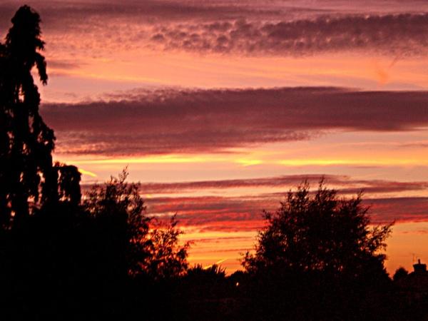 sun set number2 by evelen