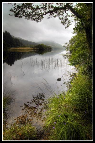 Loch Eck by uggyy