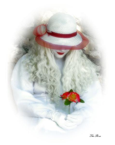 The Rose by kevski
