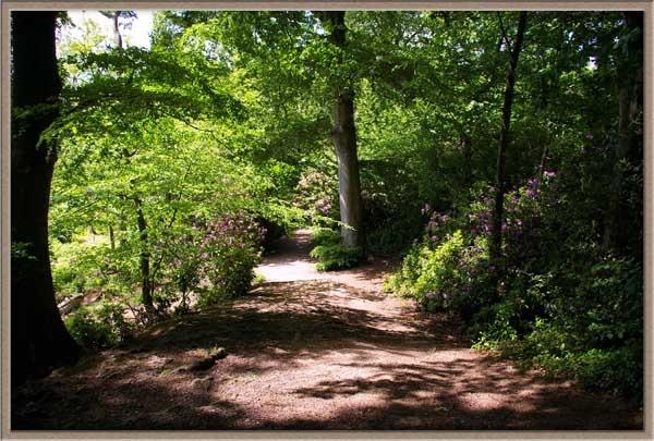 Path by pgurnett