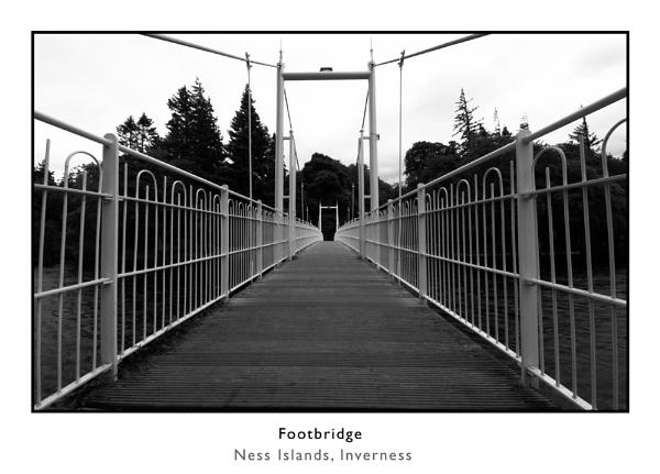 bridge by woodrow