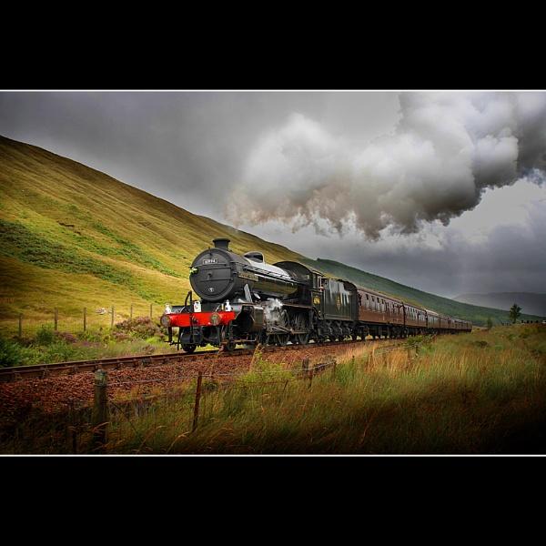 West Highlander by robincoombes