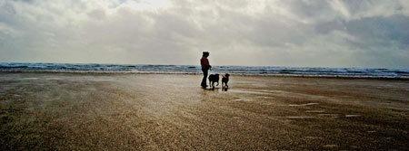 Pembrey Beach by LOGICONE