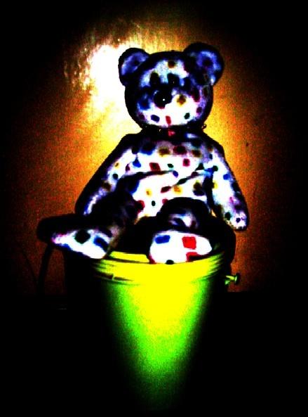 Bear in the spotlight by Bigshot