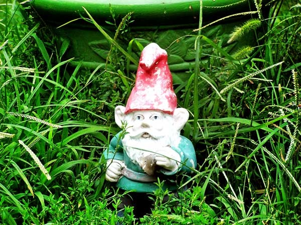 Garden Gnome by TripleDshake34