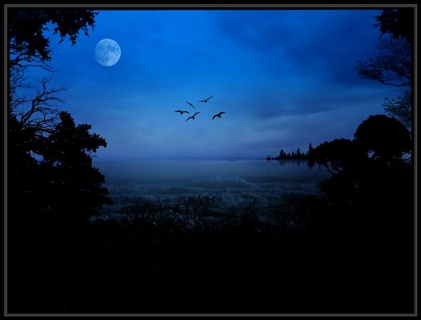 Moonlight Sonata by Photogene