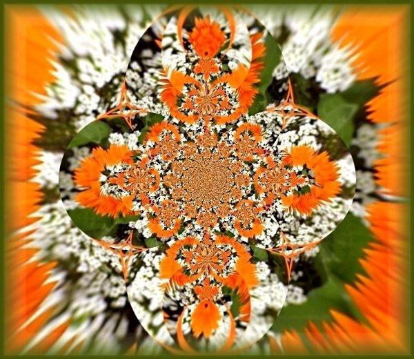 Orange Sunburst by Glostopcat
