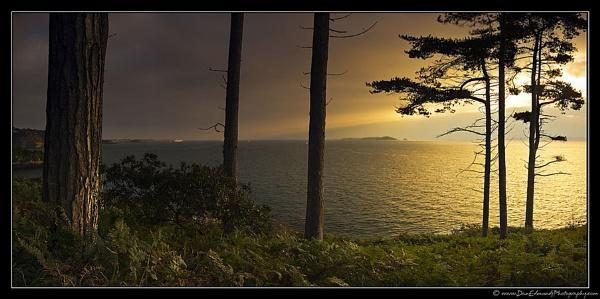 East Coast by Guernseydan