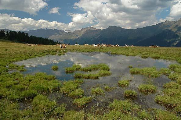 Trentino by stijn