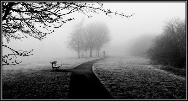 Foggy Day by fentiger