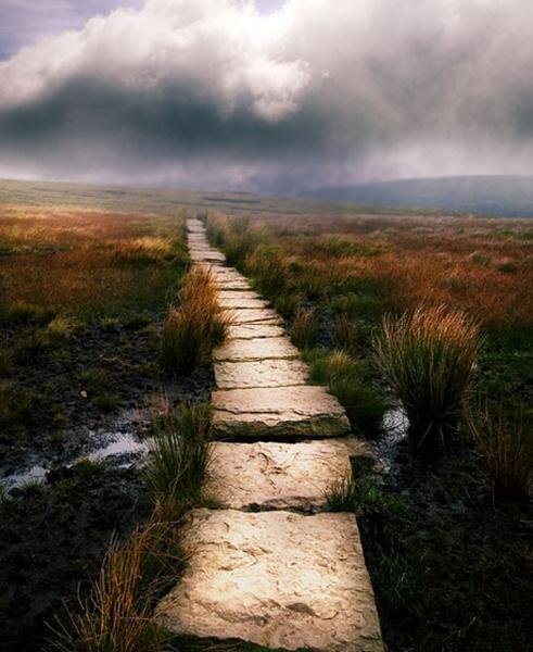 The Long Walk by buckleyi