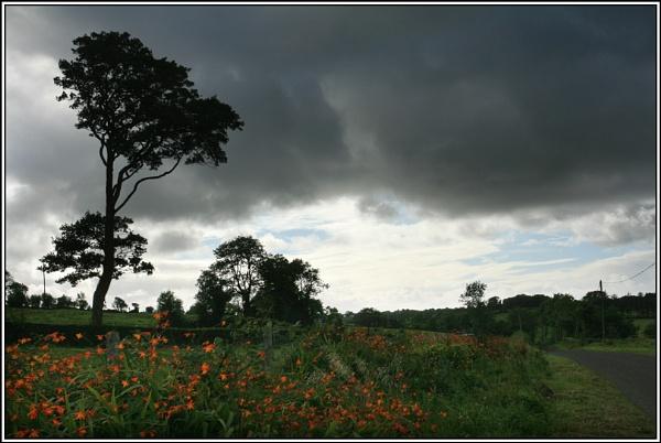 Stormy Weather by Mavis