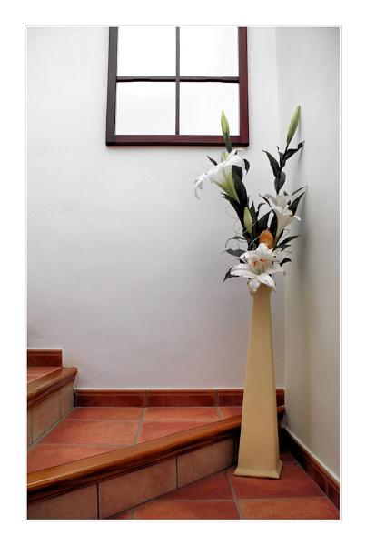 The Flowerpot by kevski