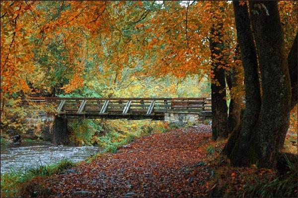 a bridge to far by AC1964