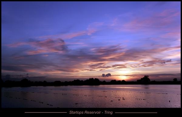 Tring Reservoir - UK by francisr