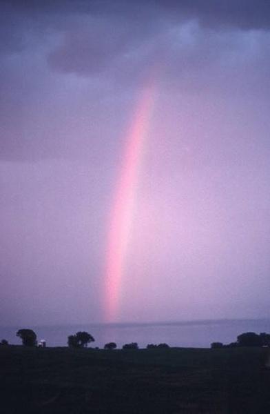 Rainbow by FlutrByShutrBy